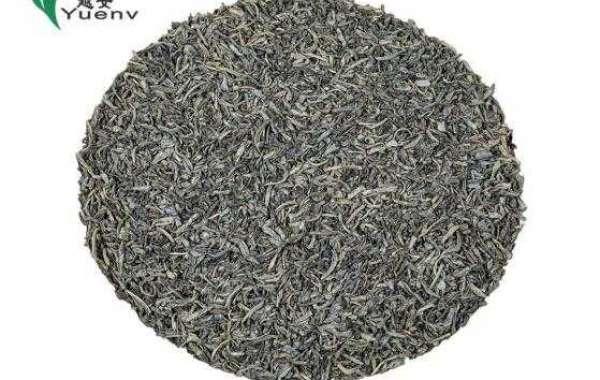 Allusions of China Green Tea Yandang Maofeng Tea