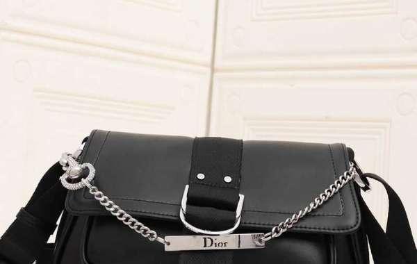 Dior Typical Bag Evaluate