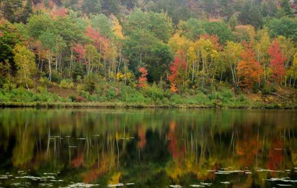 All About Maine: Acadia National Park